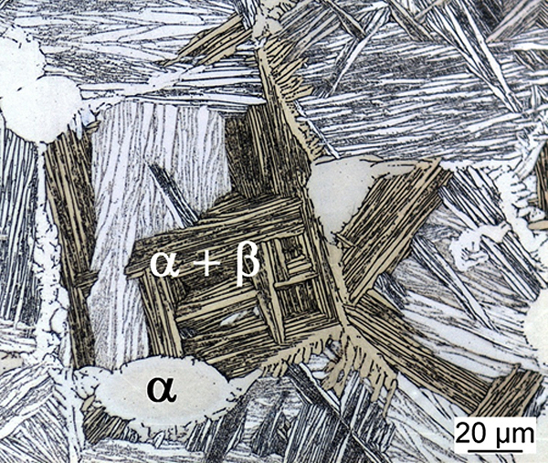 Microstructure of a high temperature alloy